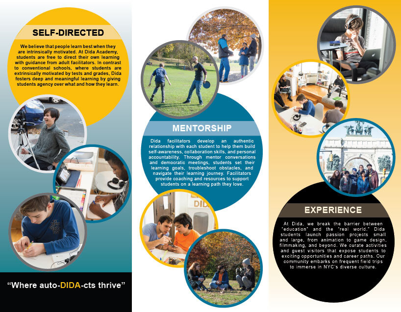 dida-brochure